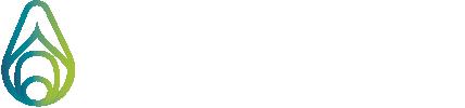 PHENOLEXA Logo